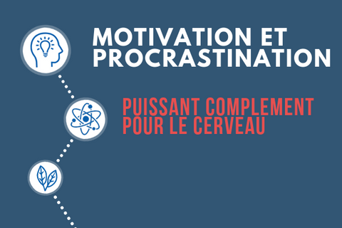 Motivation-procrastination