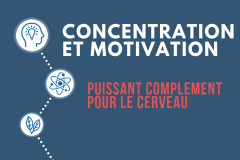 Concentration-Motivation LP