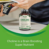Choline Bitartrate 500mg | Promotes Brain Health, Mental Focus & Memory | Prenatal Supplement for Development & Growth | 100% Vegan & Non-GMO Choline