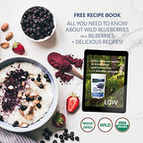 Organic Wild Blueberry Powder, Wild-Crafted from Nordic Forests, 100% Whole Fruit Bilberry, 35-Day Supply, 6 oz, Freeze-Dried Wild Blueberries, High in Anthocyanins, No Added Sugar, Free Recipe Book