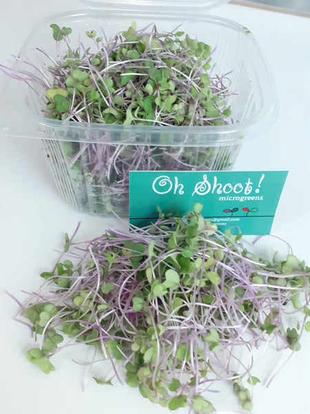 Homegrown Microgreens (organic seeds, pesticide free)