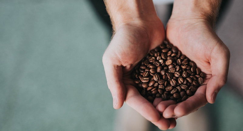 Where Did Coffee Originate?
