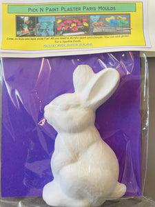 Pick N Paint Plaster Paris Moulds  - RABBIT (Handmade in NZ)