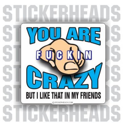 You Are Fucking Crazy But I like That in my Friends  - Funny Sticker