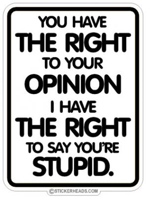 Have The Right to Your Opinion  Say You're Stupid - Funny Sticker