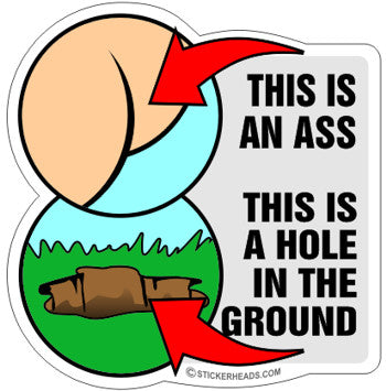 This IS AN ASS This Is a HOLE  - Funny Sticker