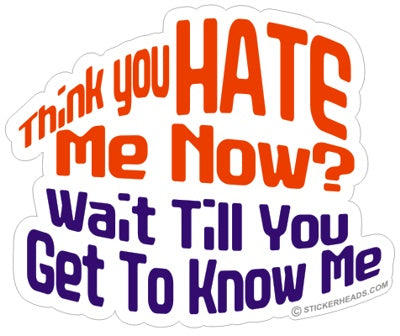 Think You HATE me now?  -  Funny Sticker