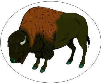 Buffalo -Oval- Native Indian American Sticker