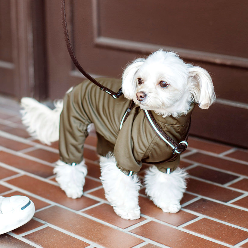 Stretch Raincoat