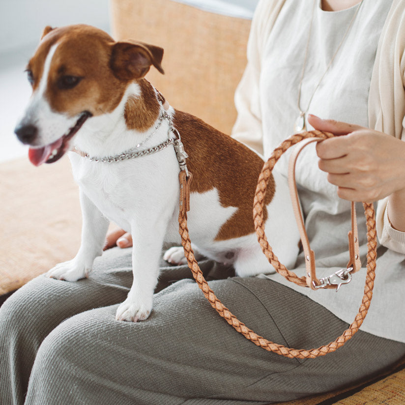 Tanned Leather Woven Lead