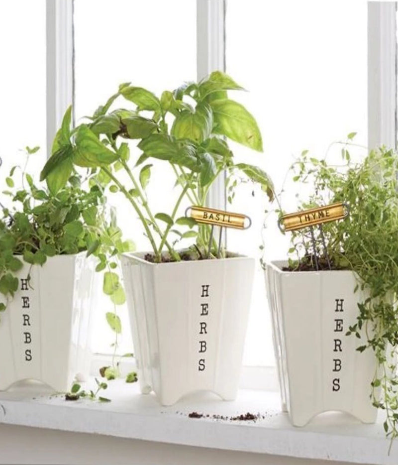 Mud Pie Herb Pots