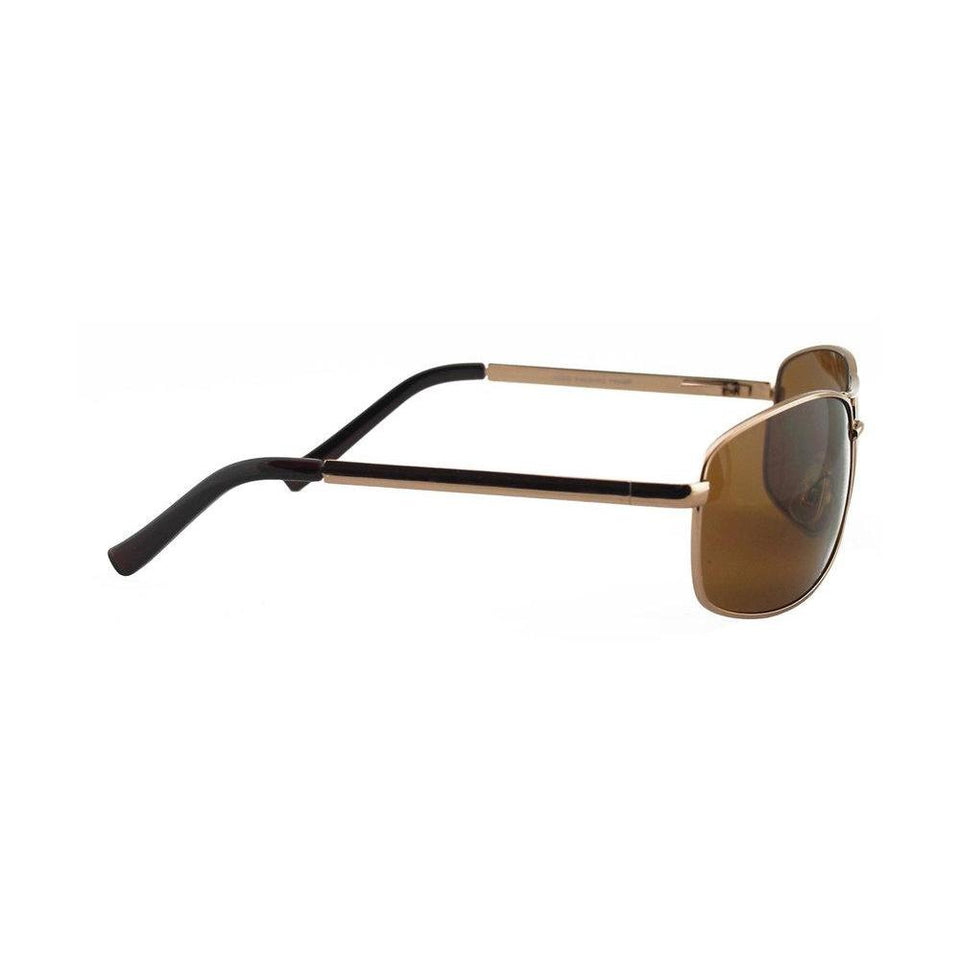 Brisbane Aviator Sunglasses Online - Cruisers Sunglasses 2021 - Passport Eyewear