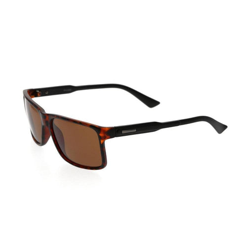 Huaraz Polarised Wayfarer Sunglasses Online - Polarised Sunglasses 2021 - Passport Eyewear