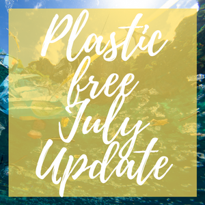 Plastic Free July - Over Half Way