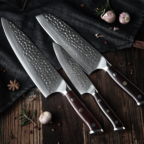 Kizaru Kanji - Japanese Damascus Steel Kitchen Chef Knife Set (3-Piece)