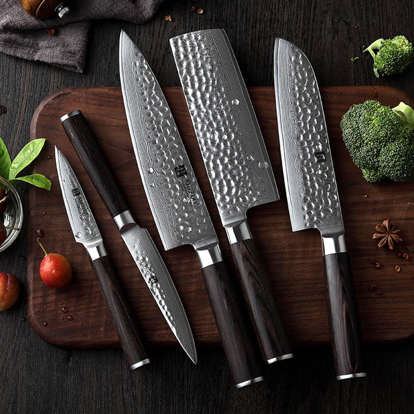 Kizaru Ganjo - Japanese VG10 Damascus Kitchen Chef Knife Set (5-piece)