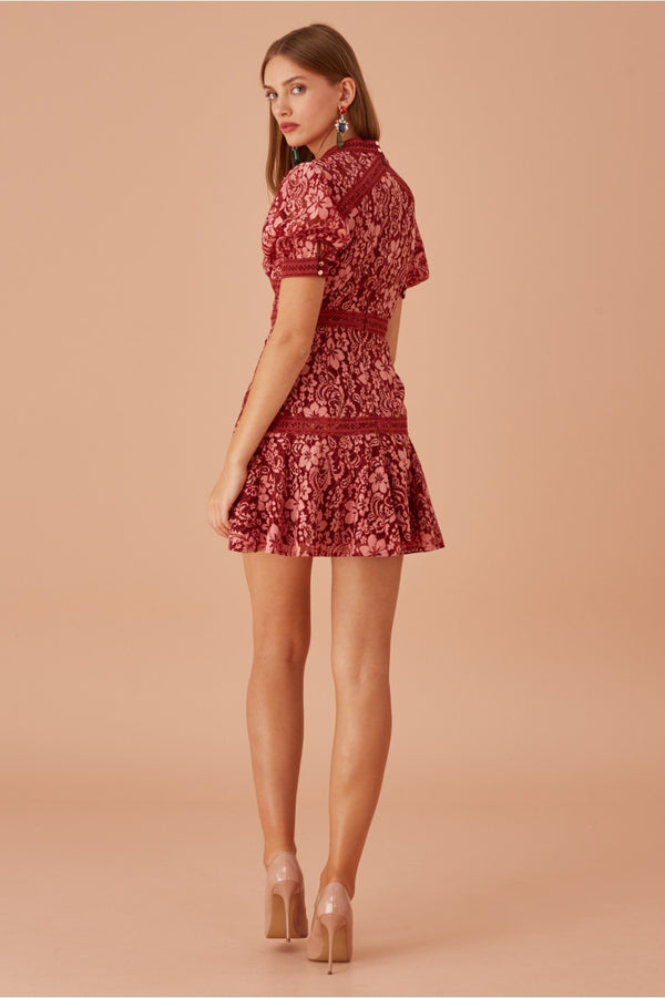 Keepsake -  Holder Lace Mini Dress - Rose