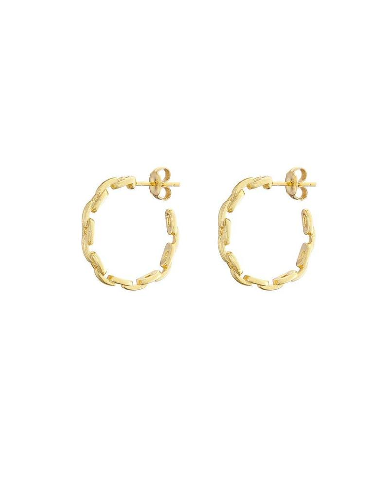 Gold Link Hoop Earrings Mary K
