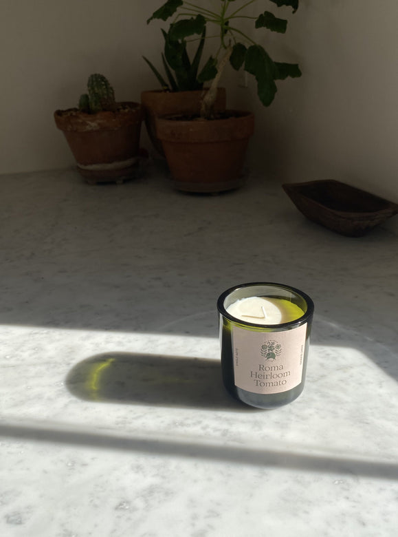 flamingo estate candles | multiple scents