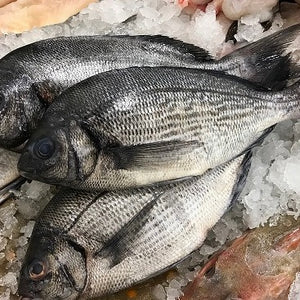 Black Bream Whole