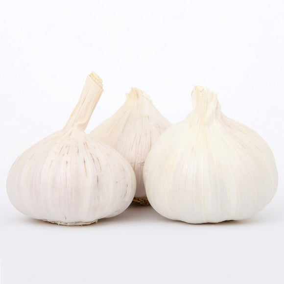 Large Whole Garlic (each)