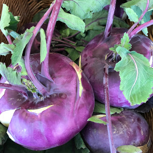 Kohl rabi - fresh from the farm
