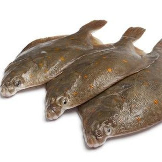 Whole Plaice (450-500g)