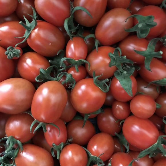 Plum Tomato - Our own (soil grown)