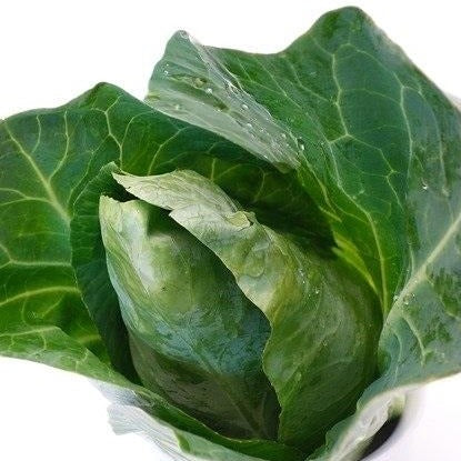 Sweetheart Cabbage/Hispi (each) - our own