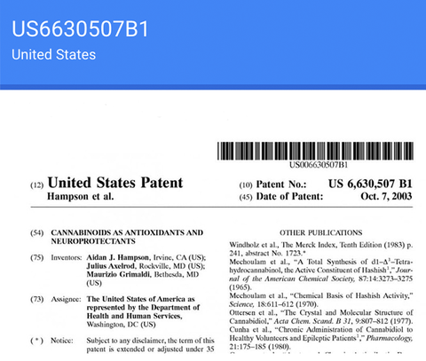 Can CBD Help Relieve the Symptoms of MS. Image of US Patent US6630507B1 which the US Government holds on Cannabinoids and lists them as a neuroprotectant. It is not clear why the US government holds this patent.