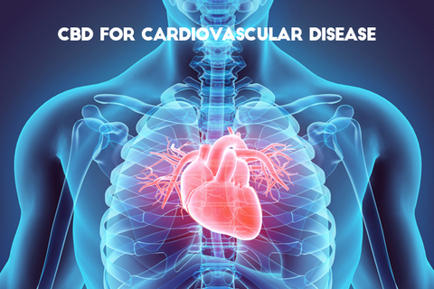 cardioAcbd for vascular disease