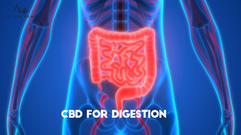 cbd for digestion
