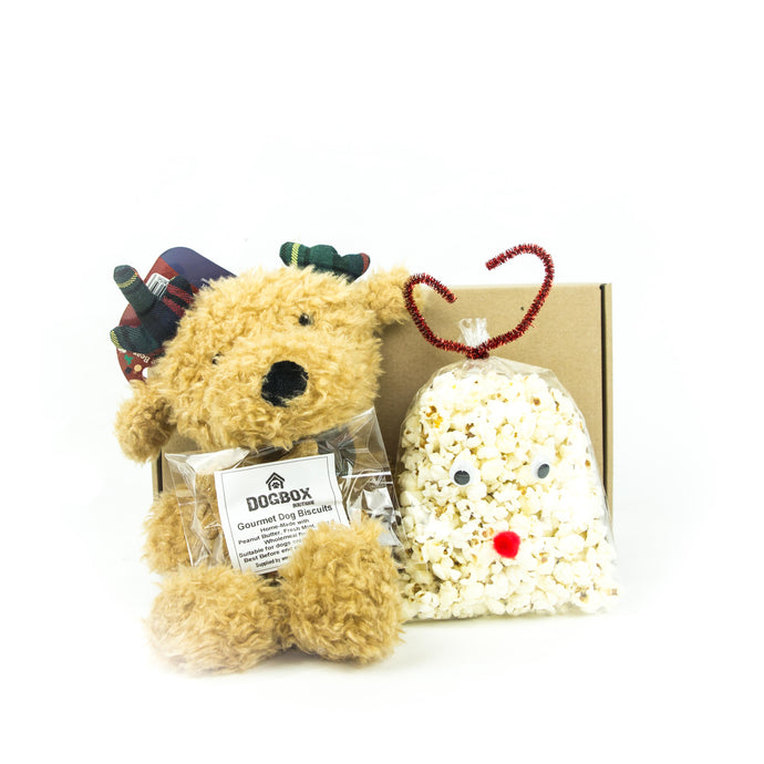 Christmas Teddy & Treat Box