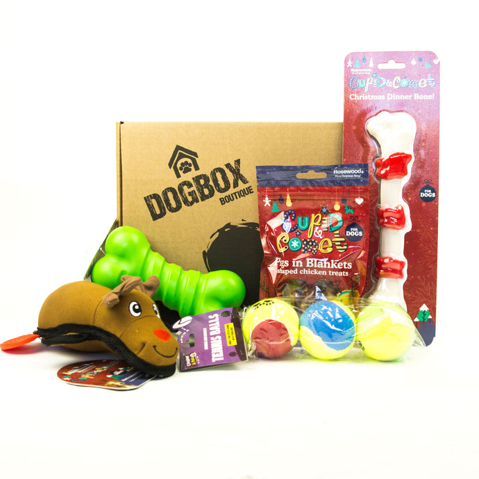 Christmas 5 Item Tough Box