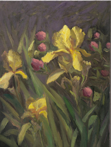 Irises and Peony buds - Oil Painting, 12 by 16 inches