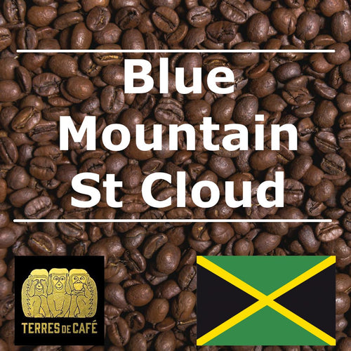 Café Blue Mountain St Cloud - Jamaïque - Terres de Café