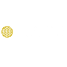 Mind Of A SurThriver