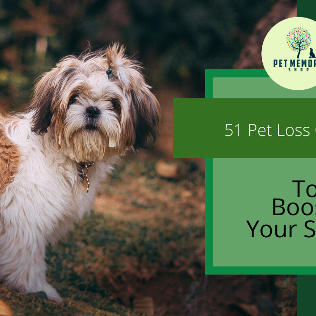 Pet-Memory-Shop-51-Pet-Loss-Quotes-To-Boost-Your-Spirits