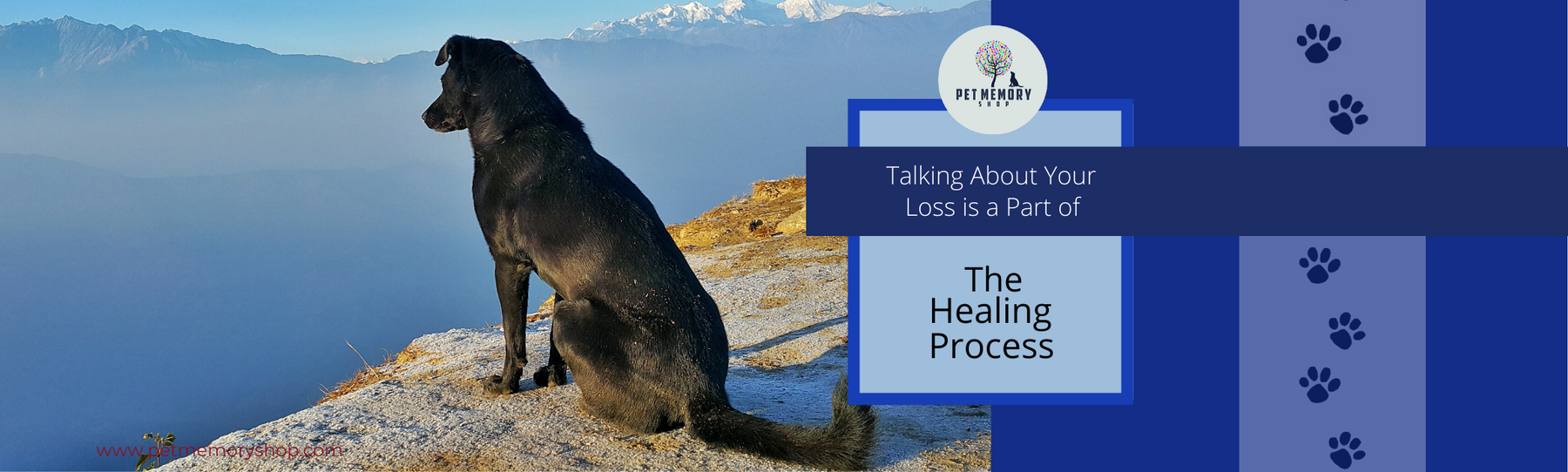 Talking about Your Loss is Part of The Healing Process