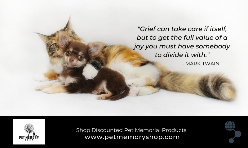 Pet Loss Support Groups