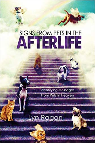 Signs From Pets In The Afterlife: Identifying Messages From Pets In Heaven Paperback