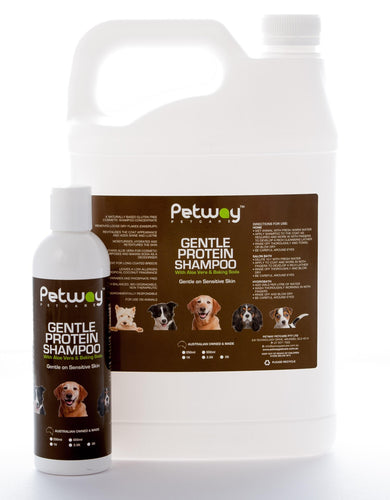 Petway GENTLE PROTEIN SHAMPOO CONCENTRATE - tropical coconut 500ml