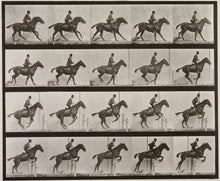 Afbeelding in Gallery-weergave laden, Mondmasker Eadweard Muybridge - FOMU collectie