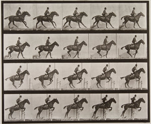 Mondmasker Eadweard Muybridge - FOMU collectie