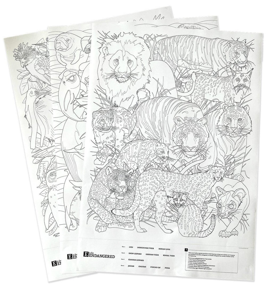 **New** Giant Coloring Posters! | OddGoods
