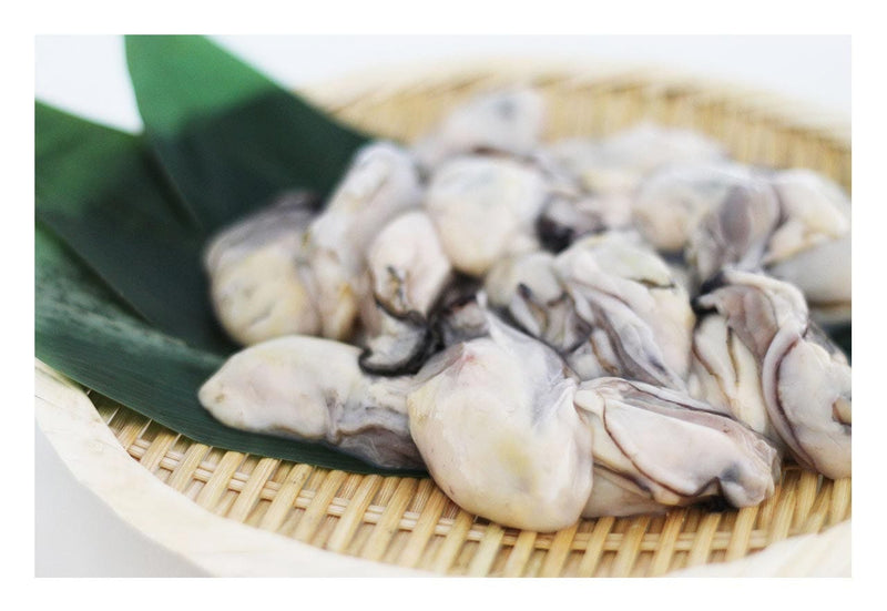 Oyster Meat for cooking