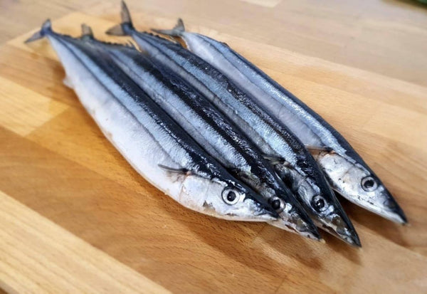 Sanma Pike Mackerel