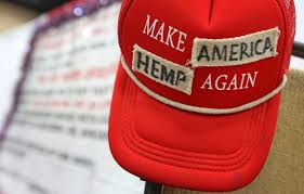Industrial Hemp for Prisons in Alaska