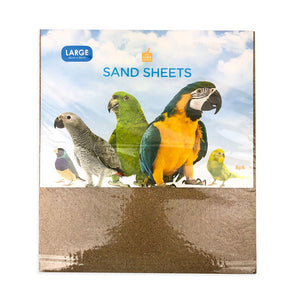SAND SHEETS