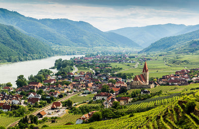 Discover Austria, Central Europe's Capital for Cool Climate Wines